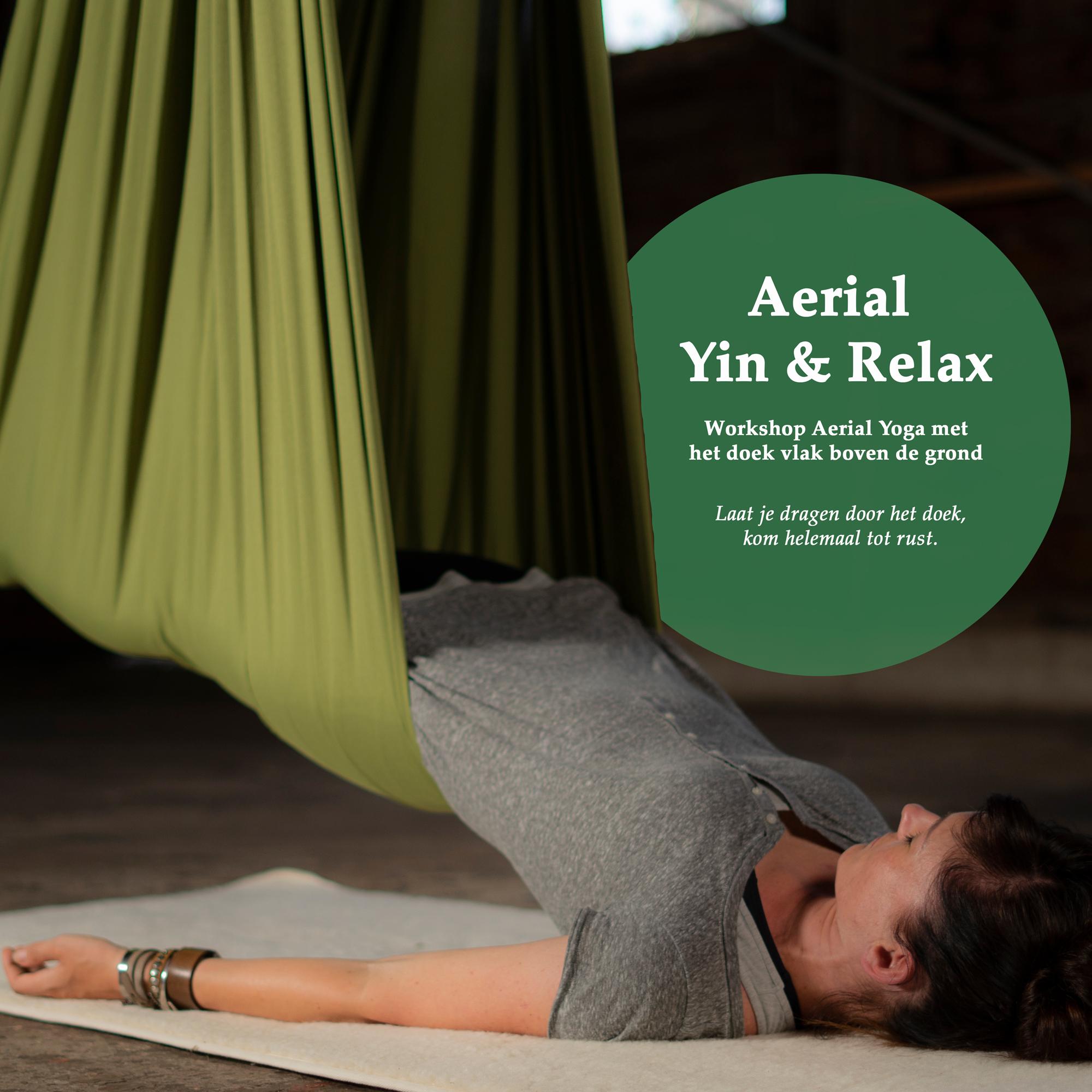 Angela Yoga Aerial Yoga Aerial Yin Aerial Relax