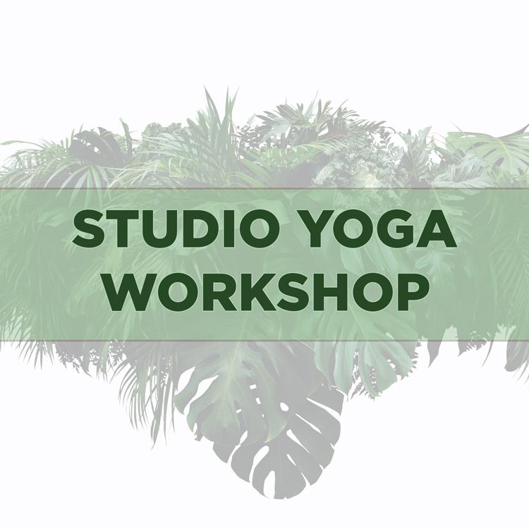 yoga, yoga workshop, aerial yoga, yin yoga, myoyin, acuyin, yoga nidra, vinyasa yoga, functionele anatomie, yoga friesland, angela yoga,