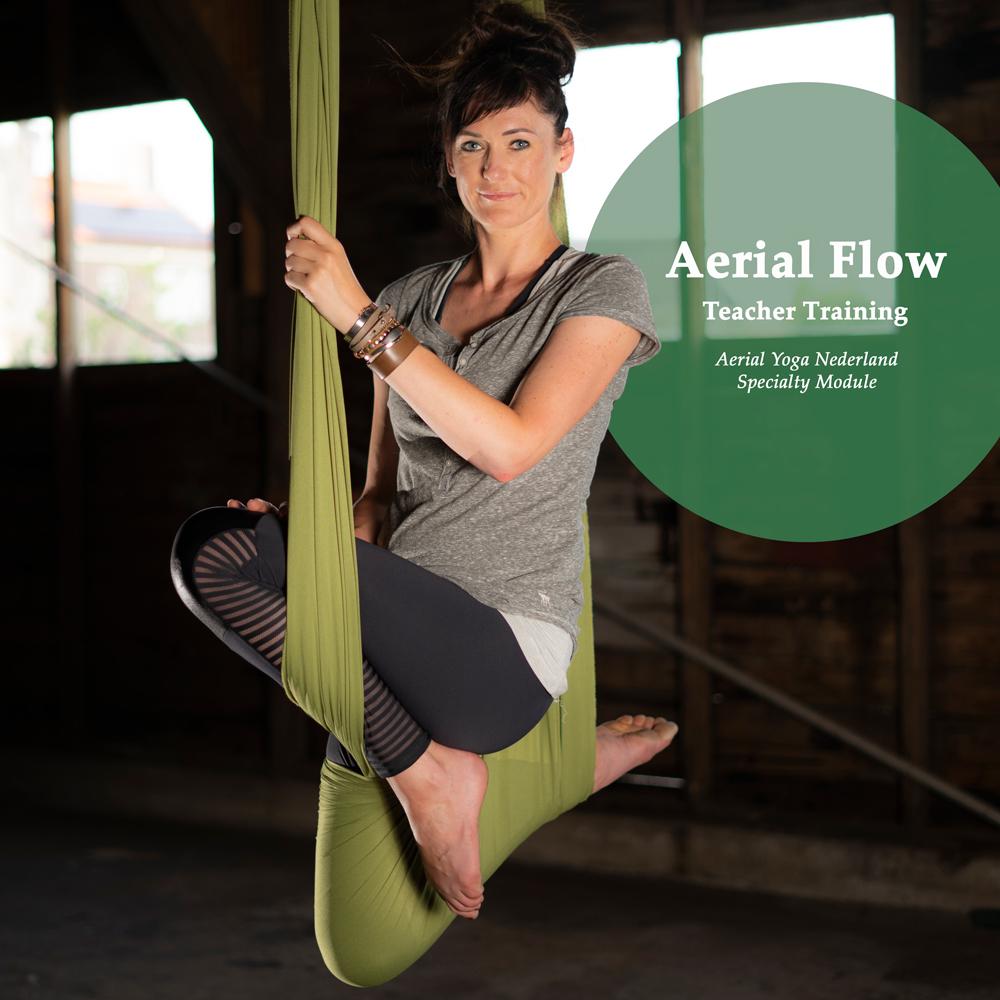 Aerial Yoga Flow Teacher Training, Angela Yoga,