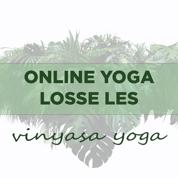 Online Yoga, Yogales, Yoga Online, Angela Yoga, Yoga Friesland, Vinyasa Yoga,