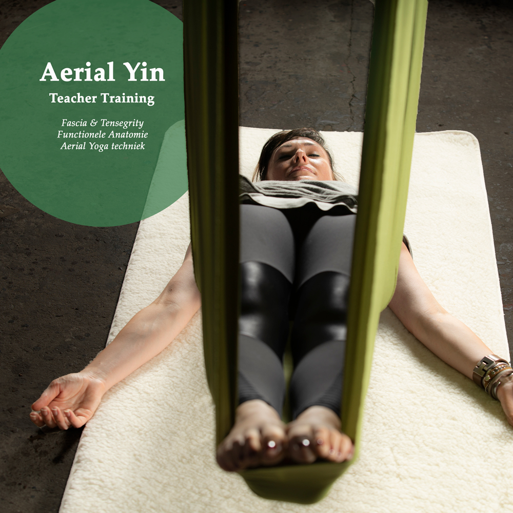 Aerial Yin, Teacher Training, Fascia & Tensegrity, Functionele Anatomie, Aerial Yoga techniek