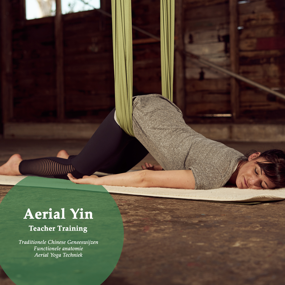 Aerial Yin, Teacher Training, TCM, Traditionele Chinese Geneeswijzen, Functionele Anatomie, Aerial Yoga techniek
