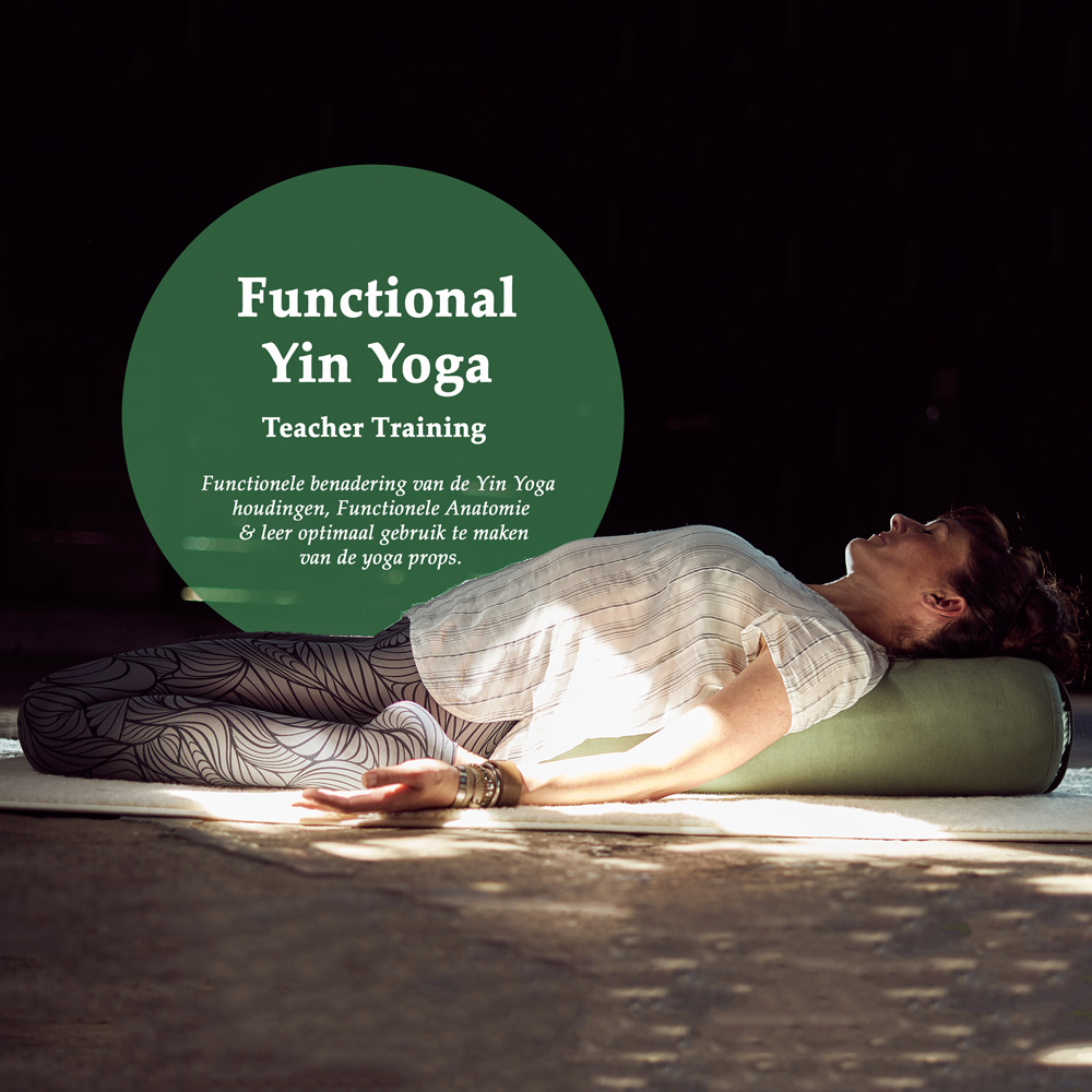 Functional Yin Yoga Teacher Training, Angela Yoga