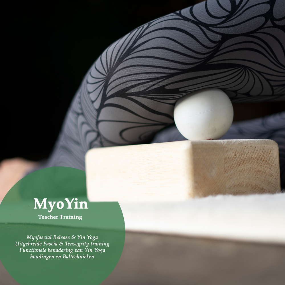 MyoYin, MFR, Yin Yoga, Teacher Training, Angela Yoga